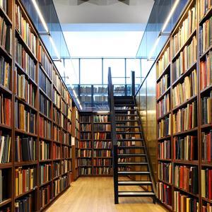 Библиотеки Нелидово